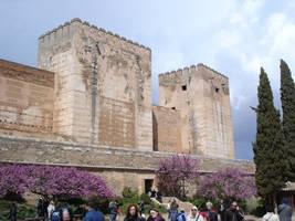The wall -  Granada by heegen