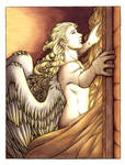 Beautiful Star of the Morning