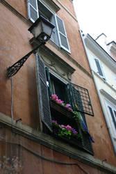 Flowers in the Open Window