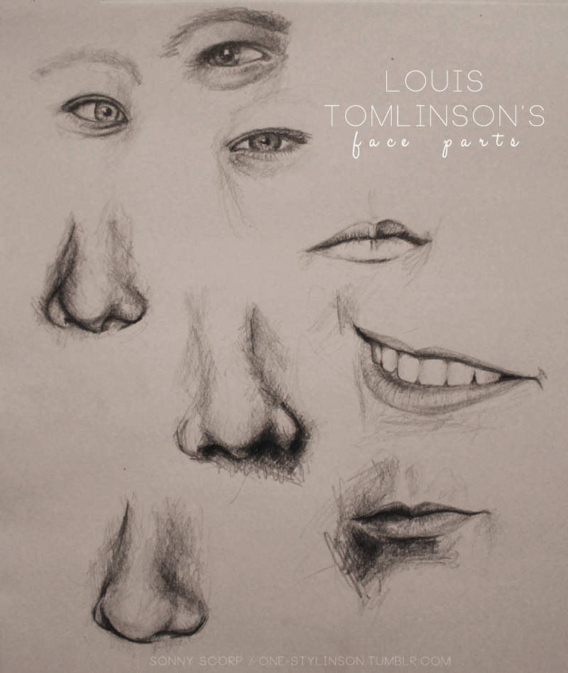 LOUIS TOMLINSON'S face parts by SonnyScorp