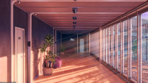 Corridor Sunset