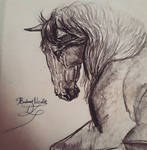 ~Horse of Kings~