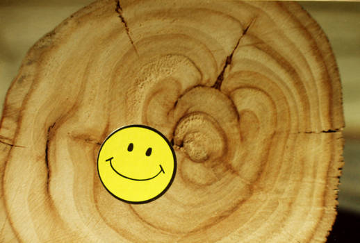 Hardwood's Soft Smiles by Nightwalker50