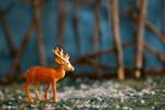 Lonely Deer by GoddessOTU