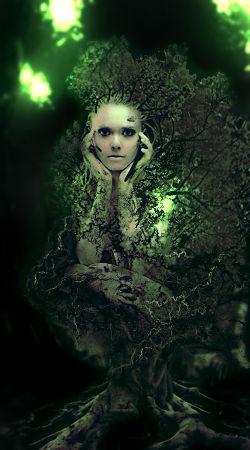 Treebirthv2
