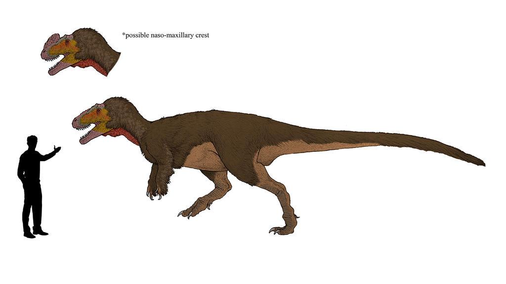 Sinotyrannus kazuoensis by dibrangosaurus on deviantart sinotyrannus kazuoensis by dibrangosaurus thecheapjerseys Image collections