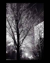 Purple night 1 by Droaven