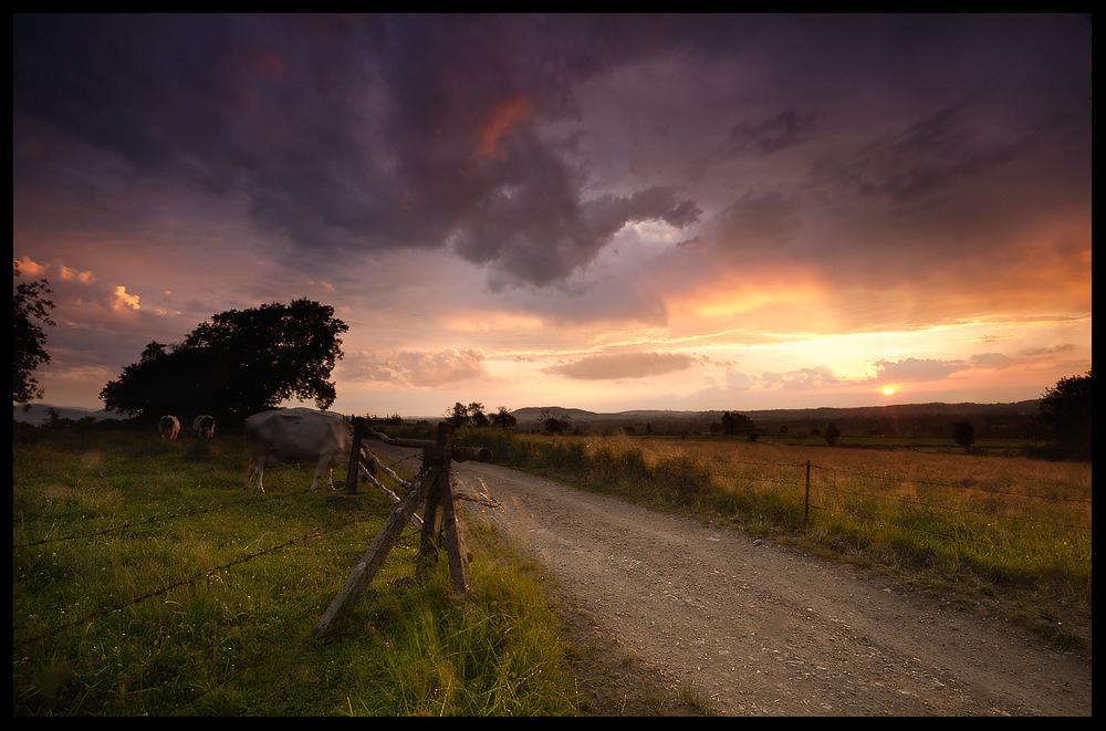 Polish evening by marcus-lizard