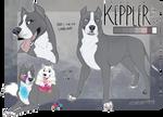 keppler ref