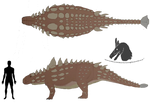 Spicatarmisaurus 2020 ref male colored by Dromeothetroognathus