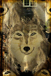 Wolf Alley