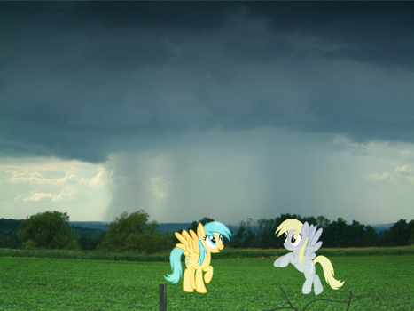Raindrops and Derpy Hooves