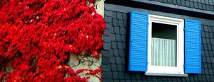 Blue Window by lani-heartcore