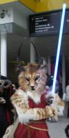 London Expo - Jedicat by tarangryph