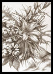 :: Simply Flowers ::