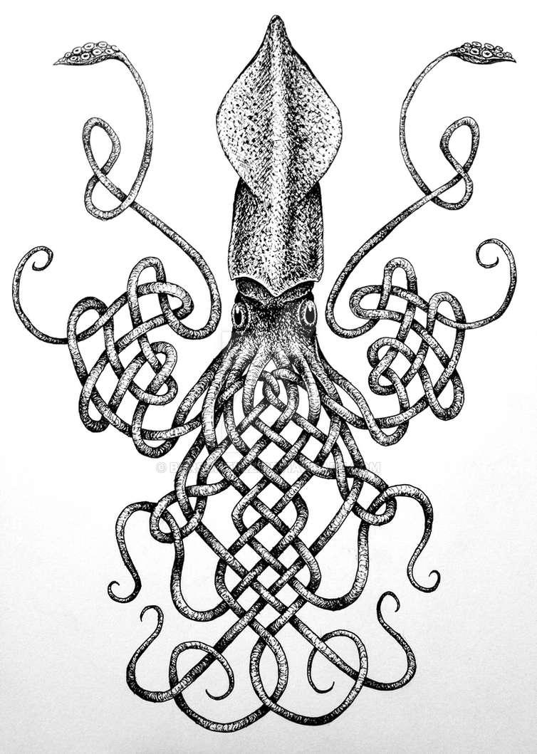 Knotical Squid by borschtplz