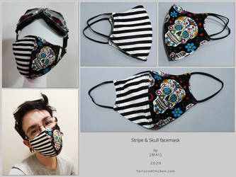 Stripe and Skull facemask