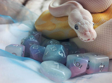 Snake with dice | Dragon protecting her eggs