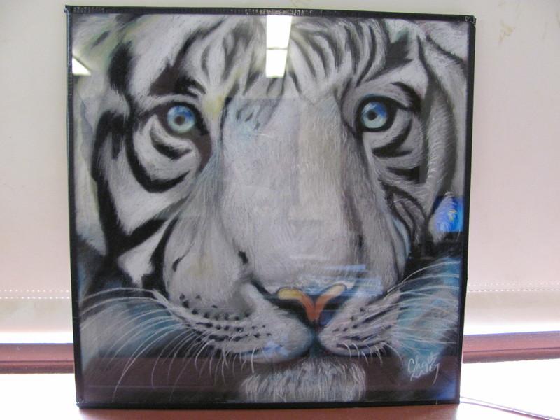 White Tiger (Displayed) by DragonSmurf
