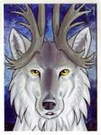 [ACEO] wolf-minori