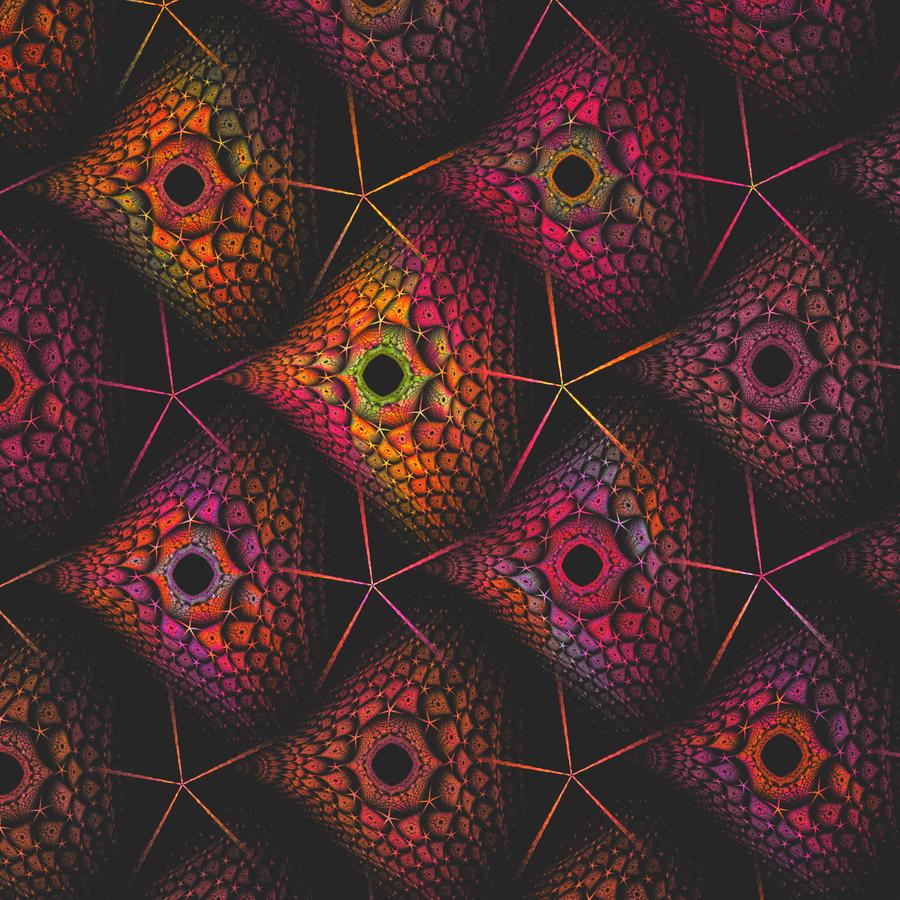 Starfish by SjerZ