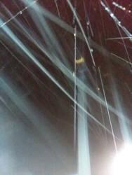 Night April Shower Streaks 4 by KBAFourthtime