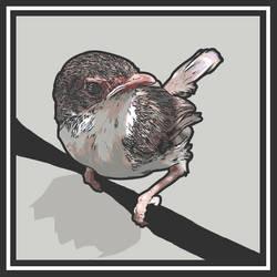 Messenger's Bird Song by mediodia