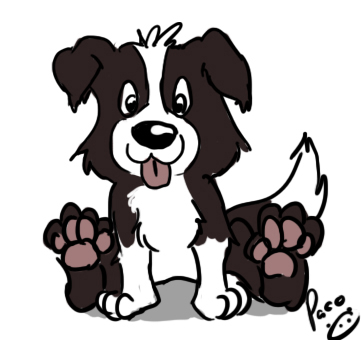 quick border collie draw by pandapaco