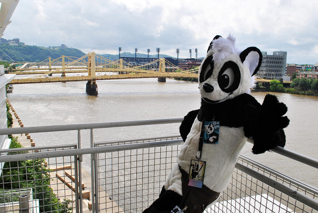 My first Anthrocon experience 1 by pandapaco