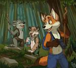 Adventure through the woods.