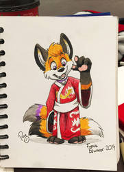 Kimono Fox by pandapaco