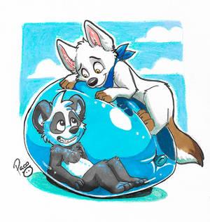 Panda in a balloon