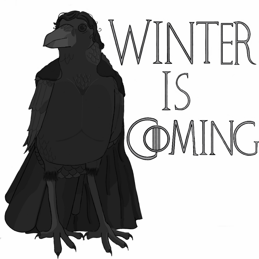 winter is coming crow - photo #5