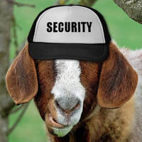 Security Goat