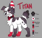 Titan Reference Sheet