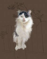 Fence Cat: progress report by EvilAnemone