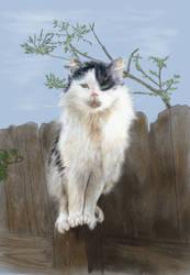 Fence Cat: progress report #3 by EvilAnemone