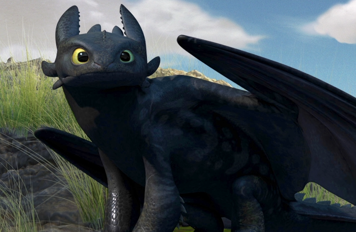 Image result for toothless photos