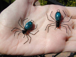 Bloo spiders