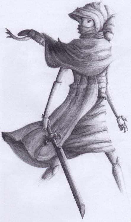 Peregrine Mendicant by Pinnaclehill