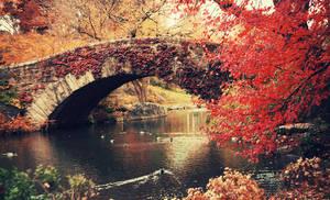 Autumn in New York City. by inbrainstorm