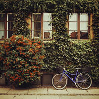 Copenhagen: Dronningensgade Street. by inbrainstorm