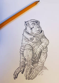Space Monkey from Spaceship Zero