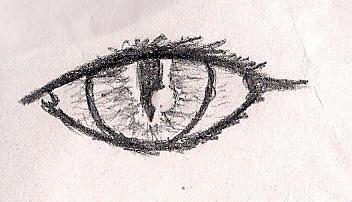 Evil Eye Drawing Clipart Of Evil Eye In Hamsa Hand K32438853 Search