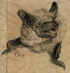 Cynric's Brown Bat