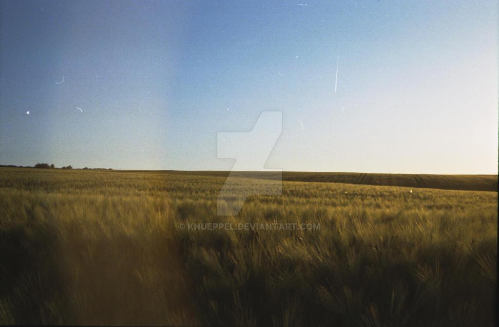 2011-10-02 004 by knueppel