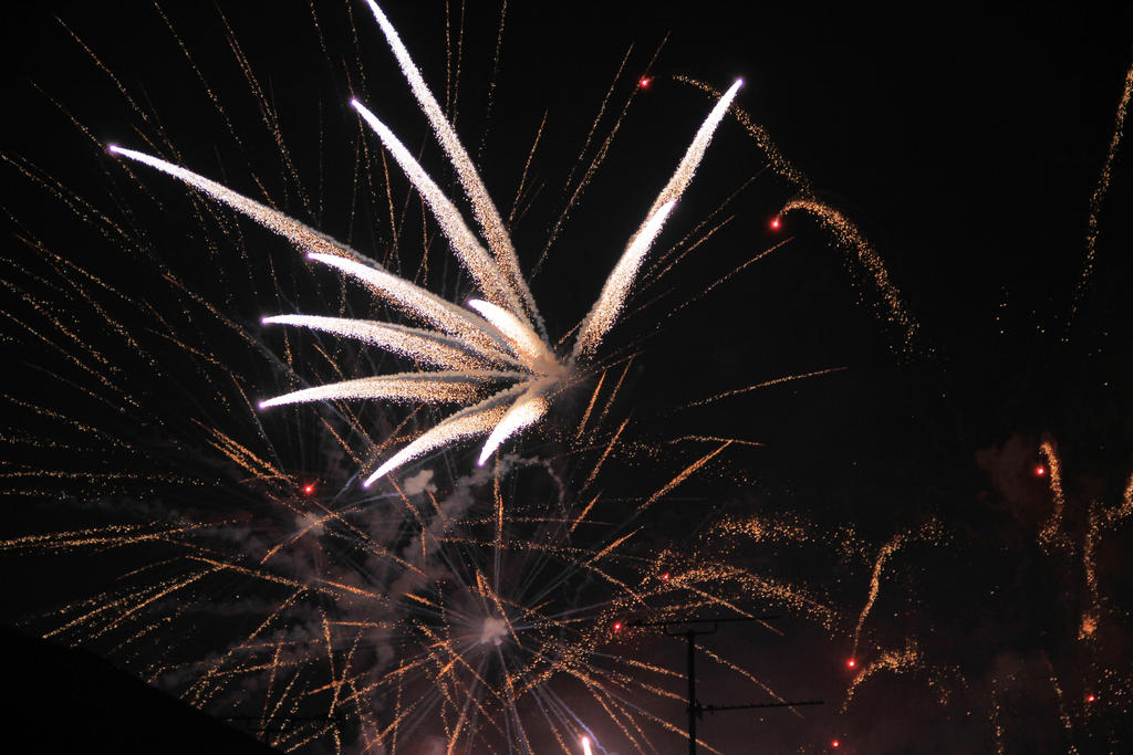 fireworks by Tiger--photography