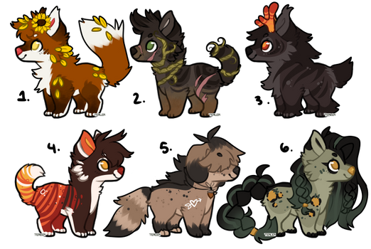 Fall adopts 4/6 open - Prices lowered