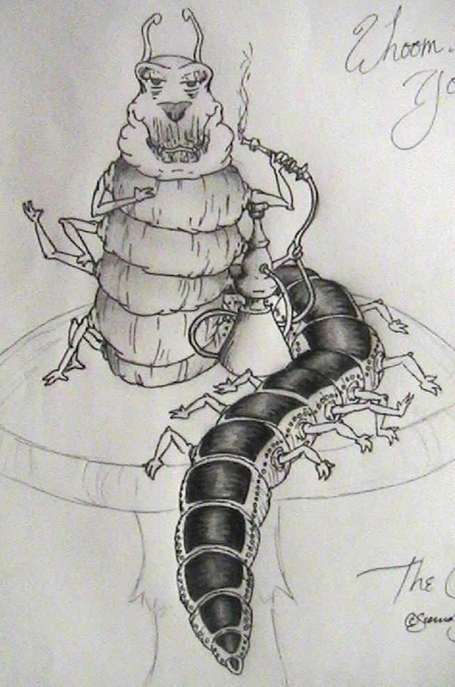 the caterpillar by ravercandy