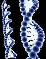Blue DNA by Milan-R